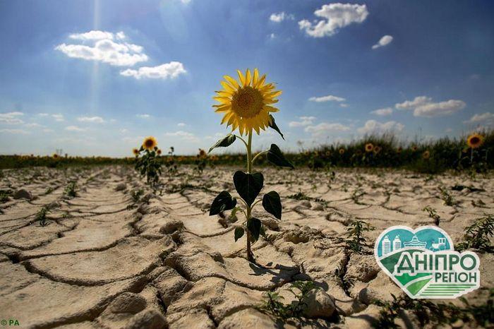 В Україні зберігається ризик весняної засухи, – Укргідрометеоцентр