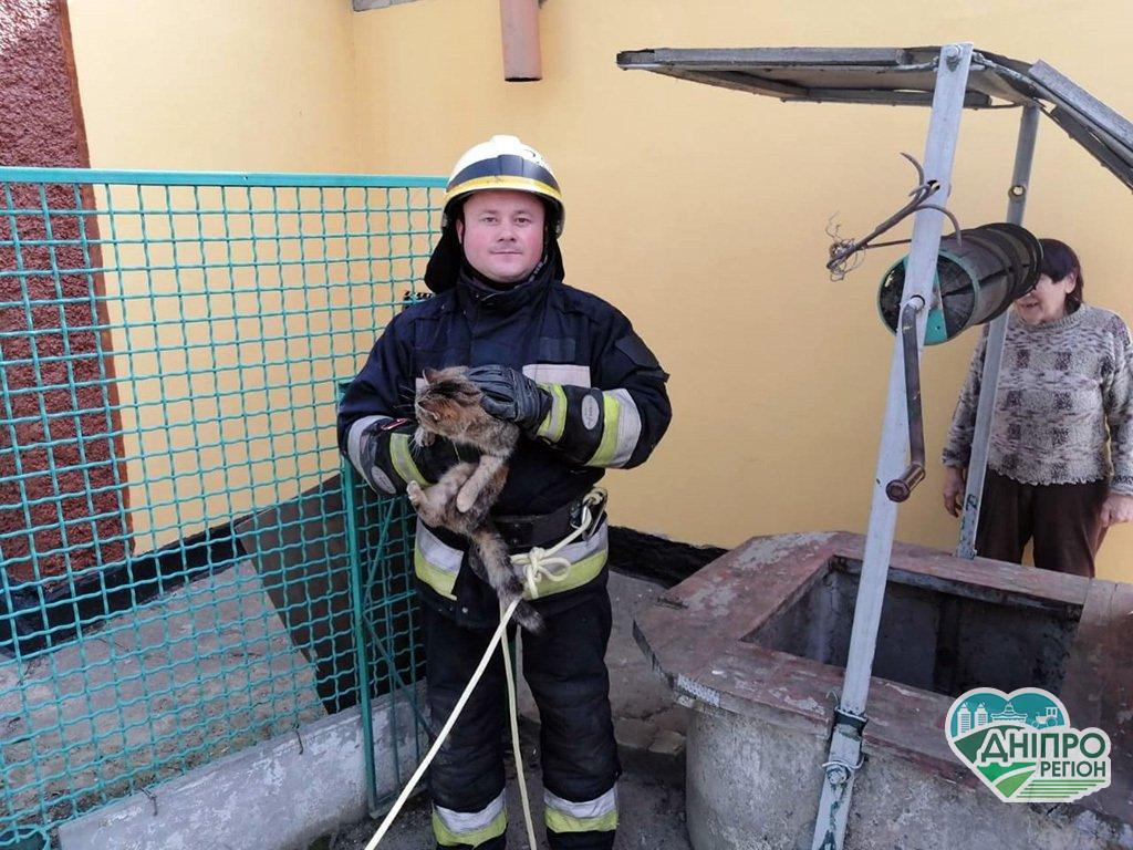 У Дніпрі надзвичайники врятували котика з шестиметрового колодязя. Милі фото
