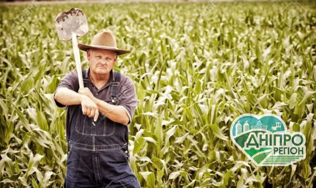 Оприлюднено показники середньої зарплати аграріїв в Україні