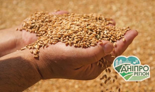 В Україні експорт зернових збільшився на 25%