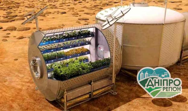 Вирощений на космічній станції салат виявився корисним та поживним