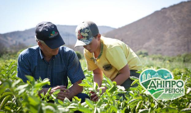 Уряд України кредитуватиме аграріїв, що створюватимуть бізнес із нуля