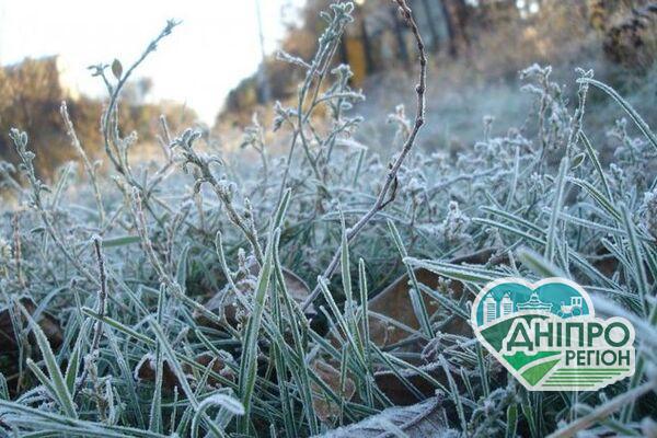 Заморозки і сильний вітер: синоптики попередили про небезпечну погоду в Дніпрі
