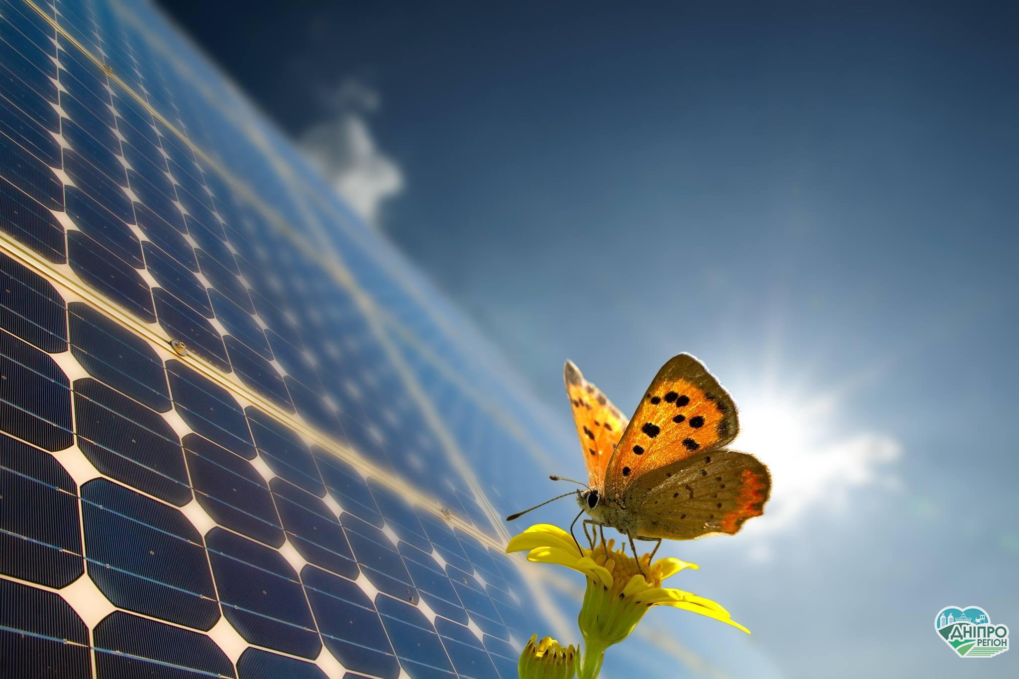 Як підвищити продуктивність сонячних електростанцій в Україні на 15%