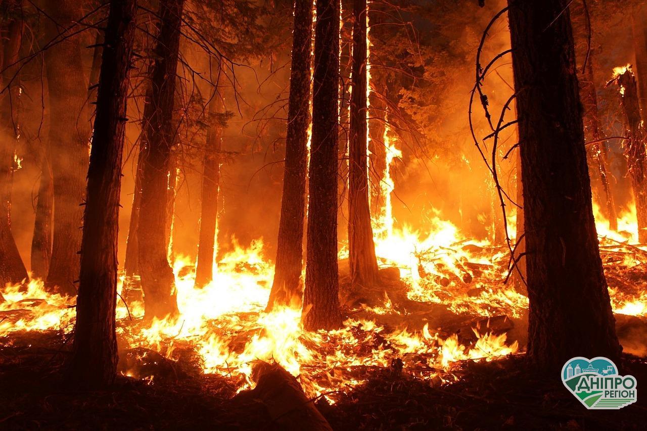 В Україні збільшили штрафи за знищення екосистеми