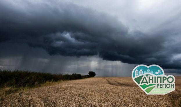 Стало відомо, у яких регіонах України відступила посуха