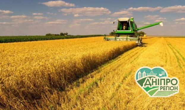 Стало відомо, яким буде врожай на півдні України