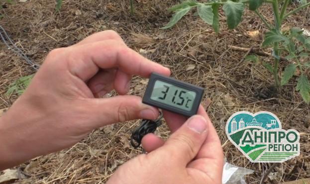 В Україні студент створив систему контролю мікроклімату у теплицях