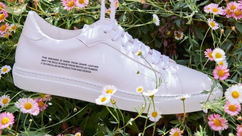 Новини Дніпра. Кросівки з виноградної шкіри: ціна і де можна заказати
