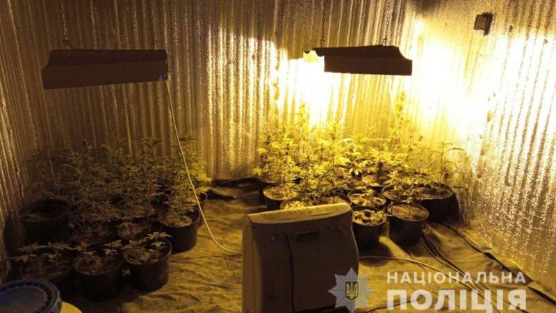 На Дніпропетровщині поліцейські затримали групу, яка збувала наркотичні речовини