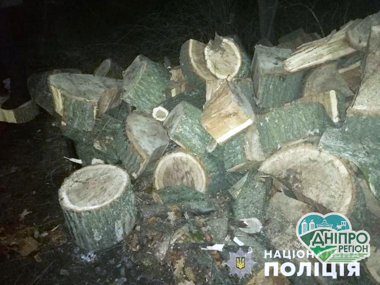 На Дніпропетровщині перевернулася вантажівка: є питання до законності деревини