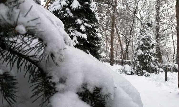 Новини Дніпропетровщини. На Дніпропетровщину йде зима: прогноз погоди на найближчий тиждень