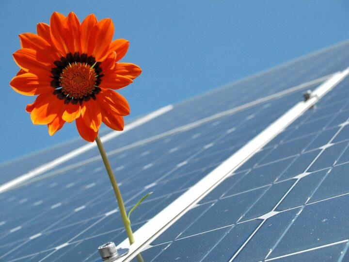 Еко планета. Сонячні батареї: переваги та недоліки