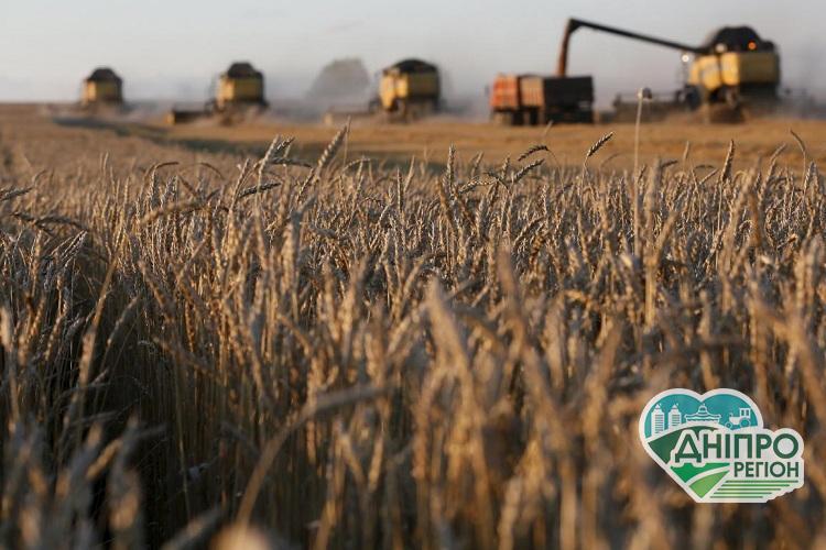 В Україні скорочується сільгоспвиробництво
