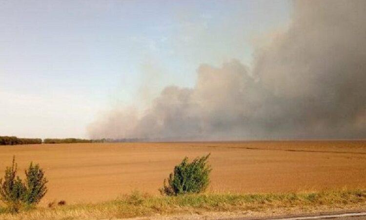 Рада збільшила штрафи за випалювання лісів