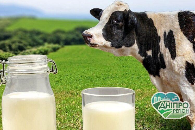 Чи буде сезонне зниження цін на молоко
