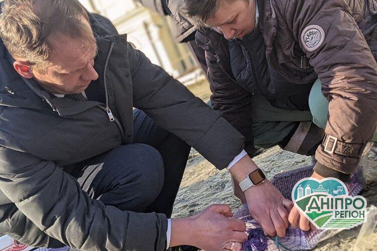Держекоінспекція випустила на волю щигликів конфіскованих у браконьєрів