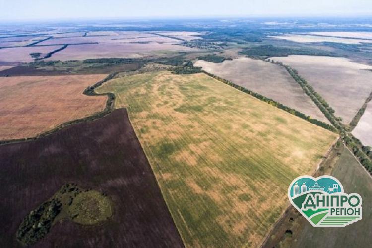 Громади Дніпропетровщини отримали у власність найбільше сільськогосподарських угідь