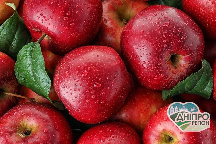 В Україні прогнозують подорожчання яблук