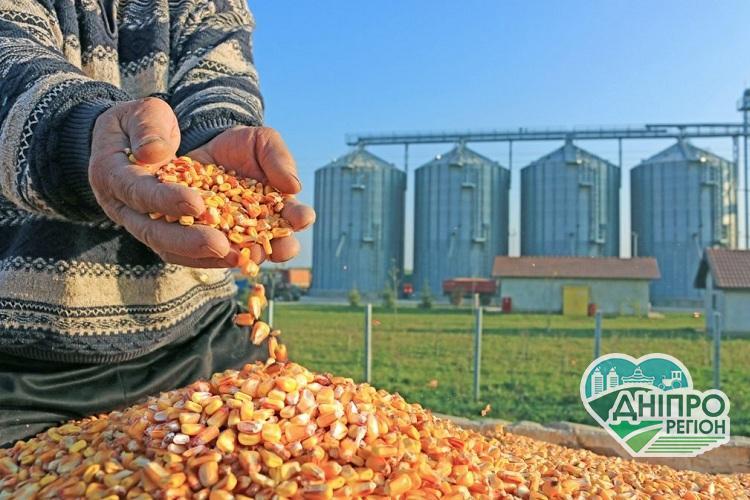 На Дніпропетровщині побудують завод з переробки кукурудзи