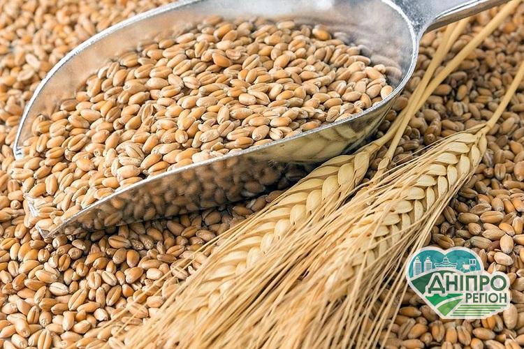 Скільки втрачає Україна через незаконні операції з зерном
