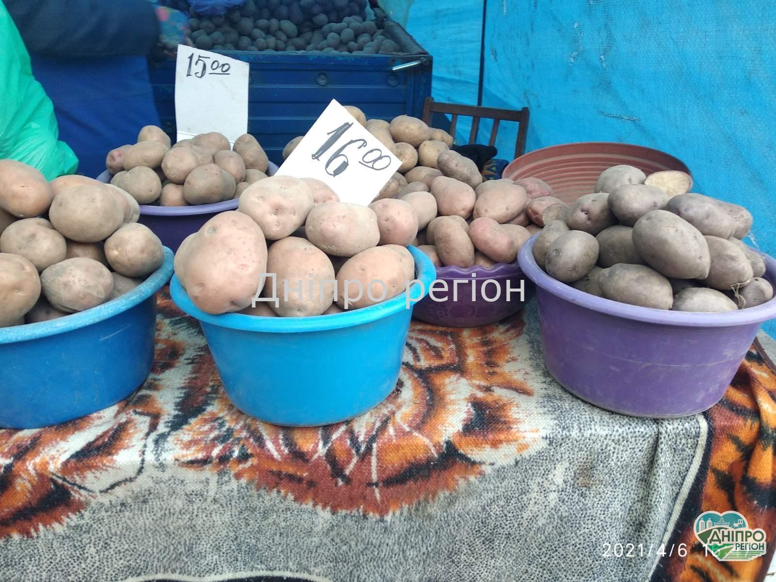 В Україні впали ціни на картоплю: скільки можна зекономити
