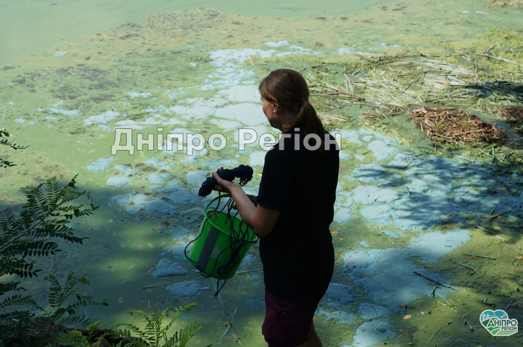 Куди дівся кисень у водах Дніпропетровщини?