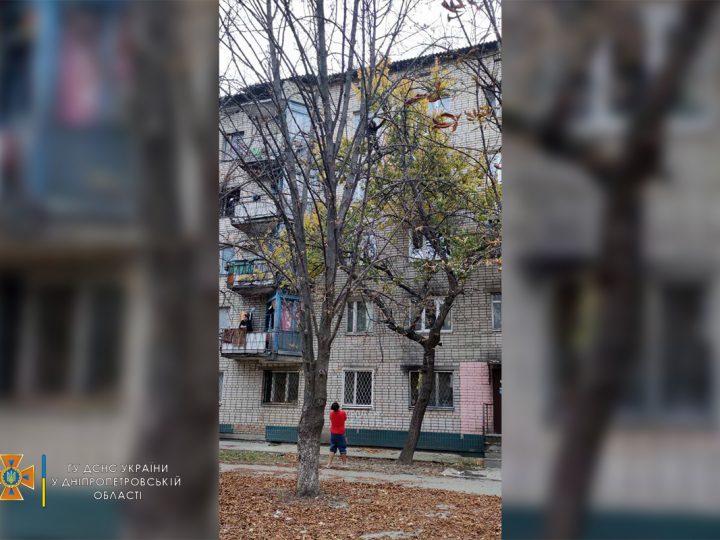 Допомогли рятувальники: на Дніпропетровщині вагітна жінка не могла злізти з дерева на рівні 4-го поверху