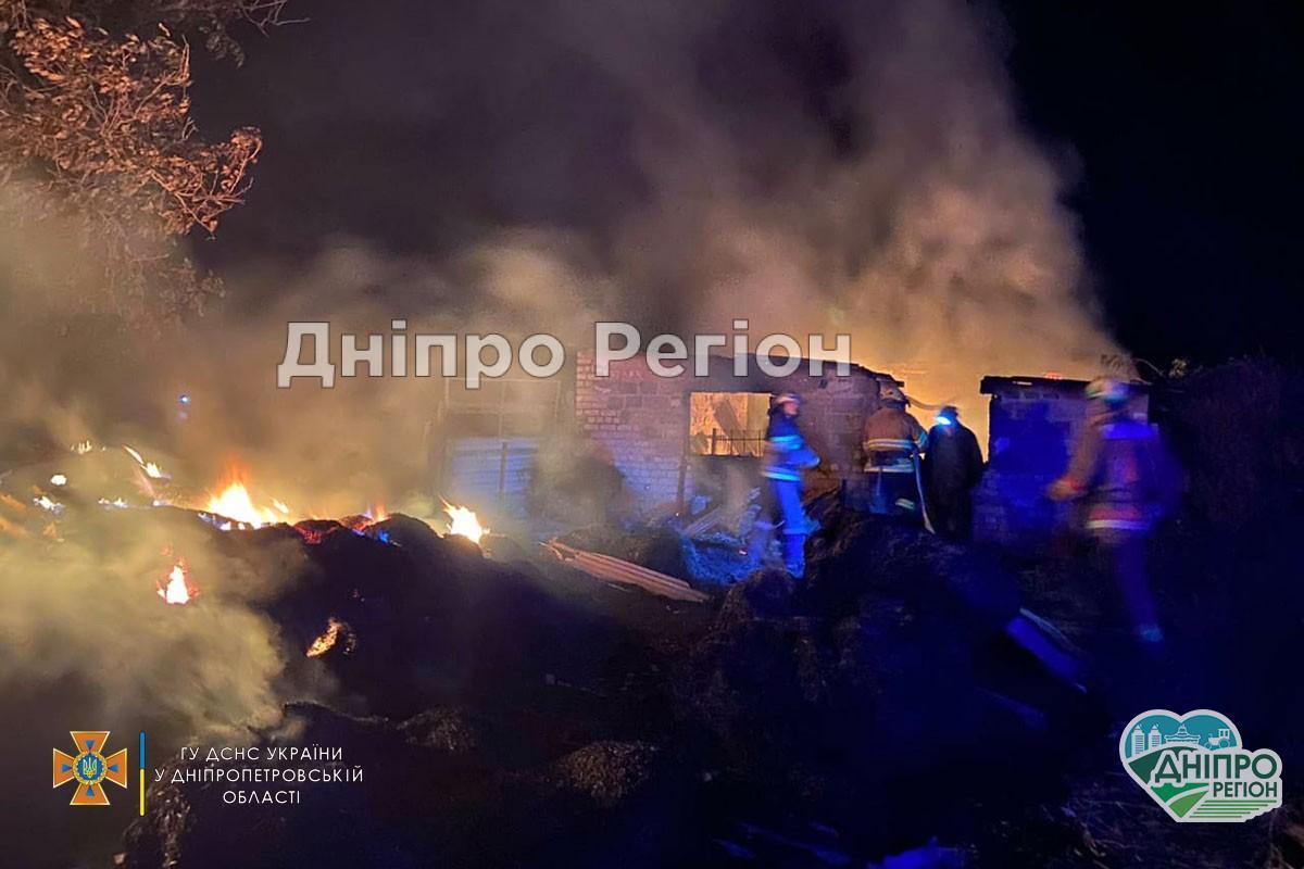 Худоба згоріла заживо: на Дніпропетровщині у вогні загинули 2 бичка та корова (Фото, Відео)