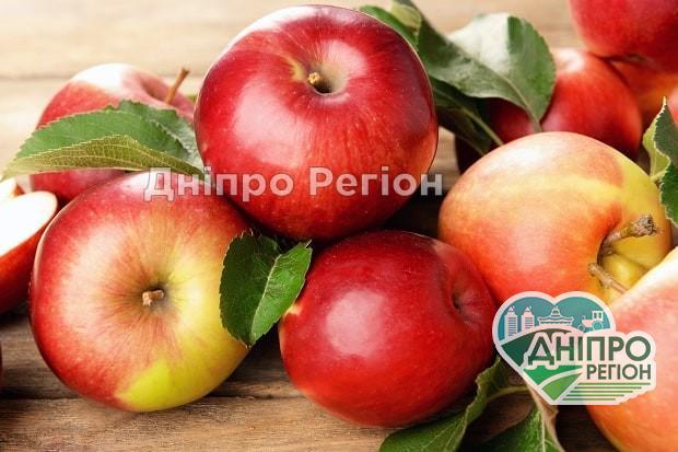 У Дніпрі рекордно подешевшали яблука: такого давно не було