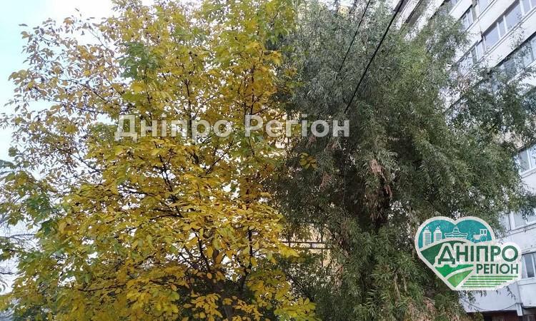 Погода у Дніпрі на 18 жовтня: не забудьте одягнути пайту